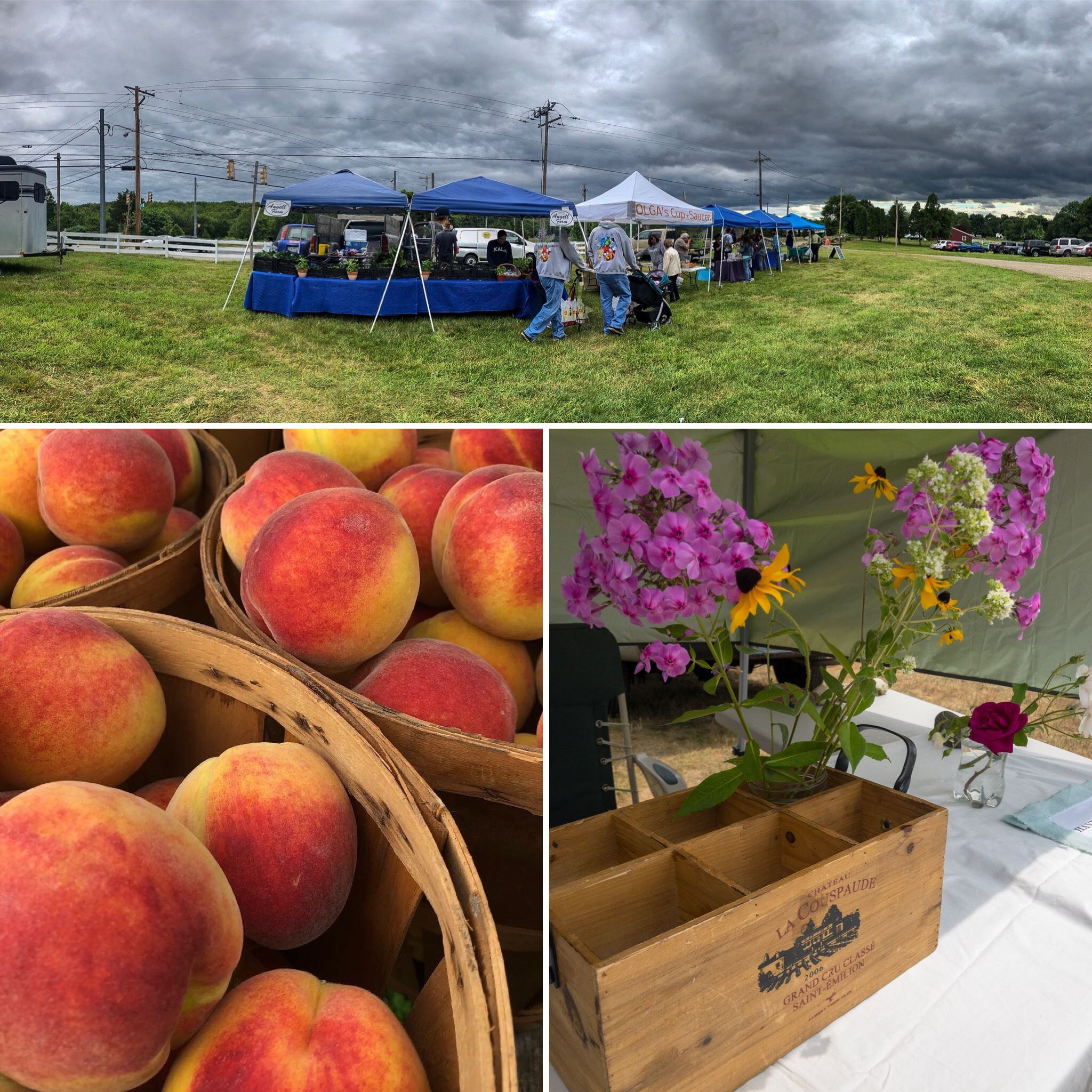 Blackbird Farm 2018 Farmers Market